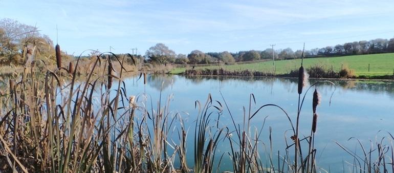 Fishing | Somerset