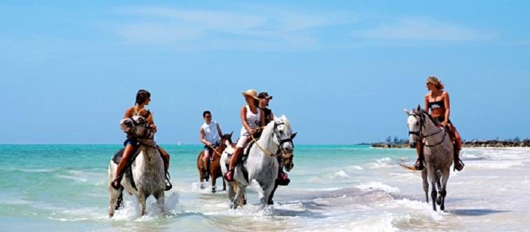 Horseback Tours | Barbados