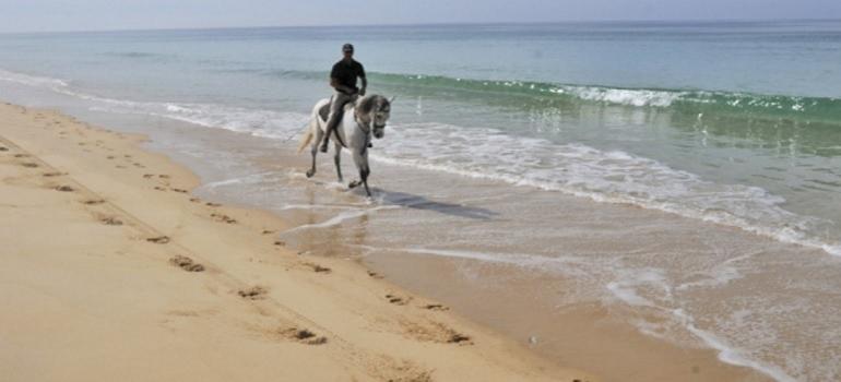 Horse Riding I Portugal