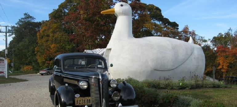 The Big Duck I USA