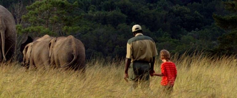 Elephant Park I South Africa