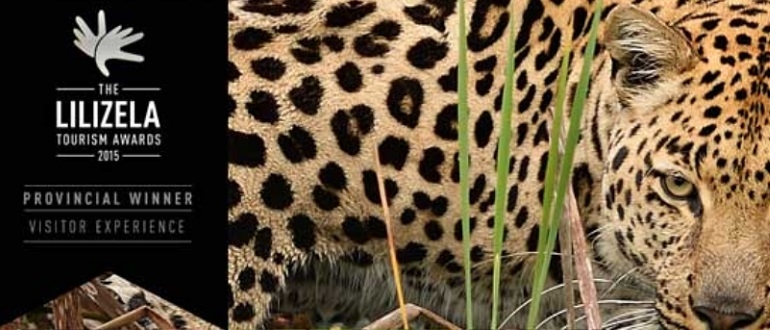 Tenikwa Wildlife I South Africa