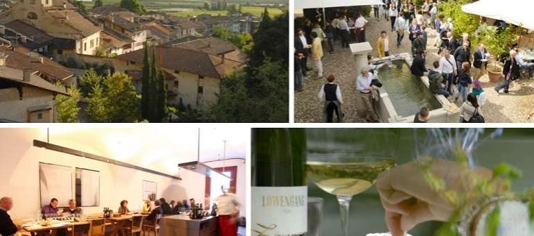 Vinery Lageder I Italy