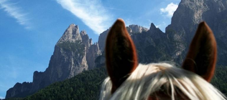Horse Riding I Italy