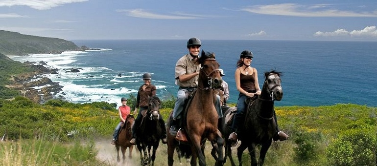 Horse Riding I South Africa
