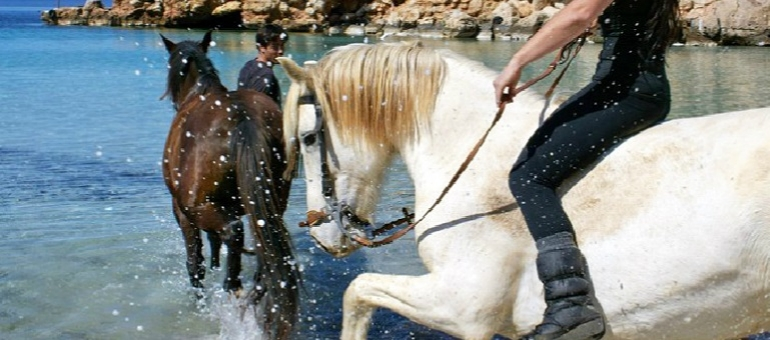 Horse Riding I Ibiza