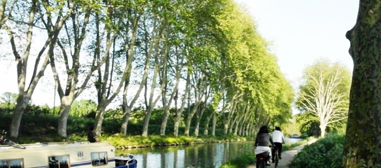 Mountain biking, cycling I South France
