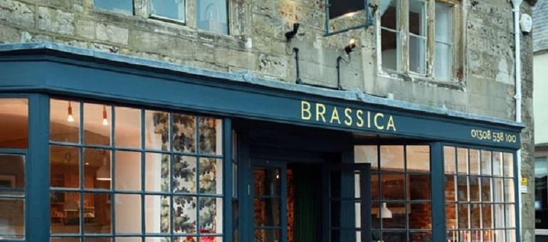 Brassica   Beaminster   Dorset